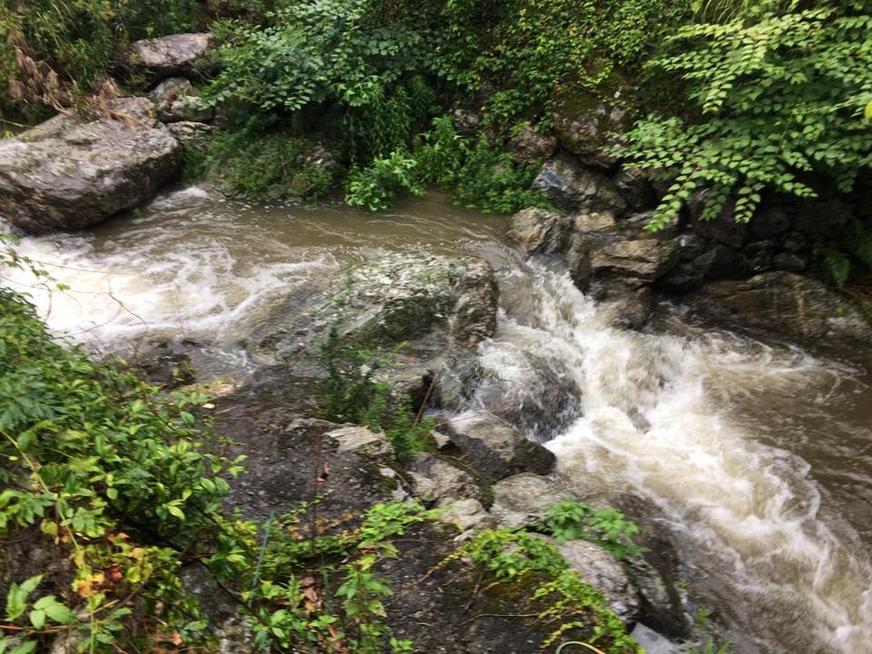 裏の川は台風の時どうなるのか…